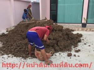 งานคนแบกดิน ขนดิน ขนทราย