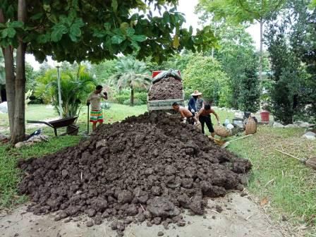 ขนดิน แบกดิน ทางแคบ ช่องข้างบ้าน ด้านหลังบ้าน
